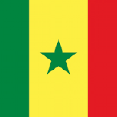 F.O. Network – E-government Senegal